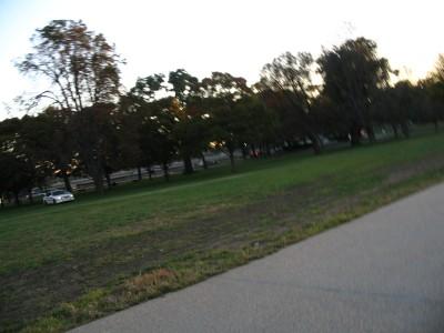 police in park