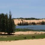 Tag 16 - die weißen Sanddünen von Mui Ne